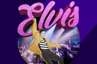 #PROJECT ELVIS