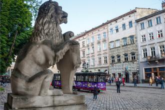 Львів - події міста Львівські Леви фотолатерея