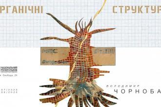 виставка «Органічні структури» Володимира Чорнобая  в НМЛ ім. А. Шептицького