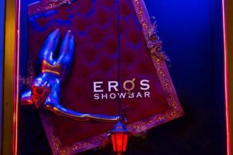 Танці, коктейлі, crazy menu, масаж, приват денс, Стриптиз-бар EROS  фото #27